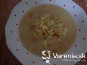 Zapriahnutá polievka so zvitkami