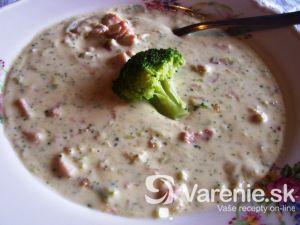 Brokolicový krém s údeným mäsom