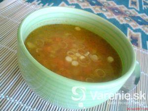 Ostrá zeleninová polievka