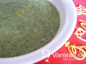 Jarná špenátová polievka